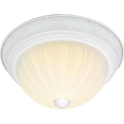 NUVO Lighting 60/443 Fixtures Ceiling Mounted-Flush