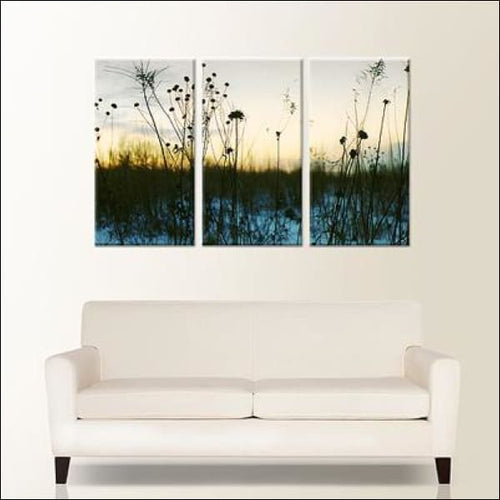 Triptych Canvas Prints-  48x30