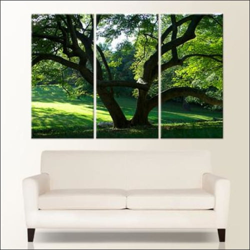 Triptych Canvas Prints - 60 x 40