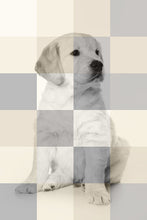 Load image into Gallery viewer, Photo Art - Mosaic - redsimaging