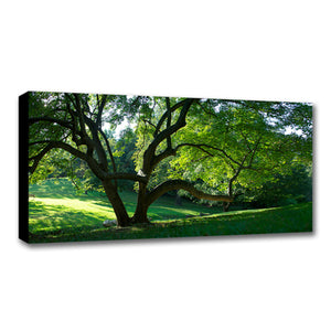 Standard Canvas Prints - 10 x 30""
