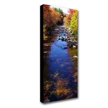 Load image into Gallery viewer, Standard Canvas Prints - 16 x 40""