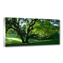 Load image into Gallery viewer, Standard Canvas Prints - 12 x 24""
