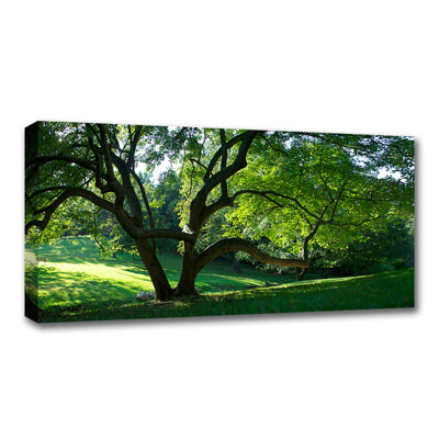 Standard Canvas Prints - 10 x 30