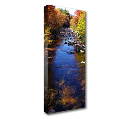 Standard Canvas Prints - 16 x 40