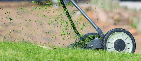 hand lawn mower lawn mowing mow meadow