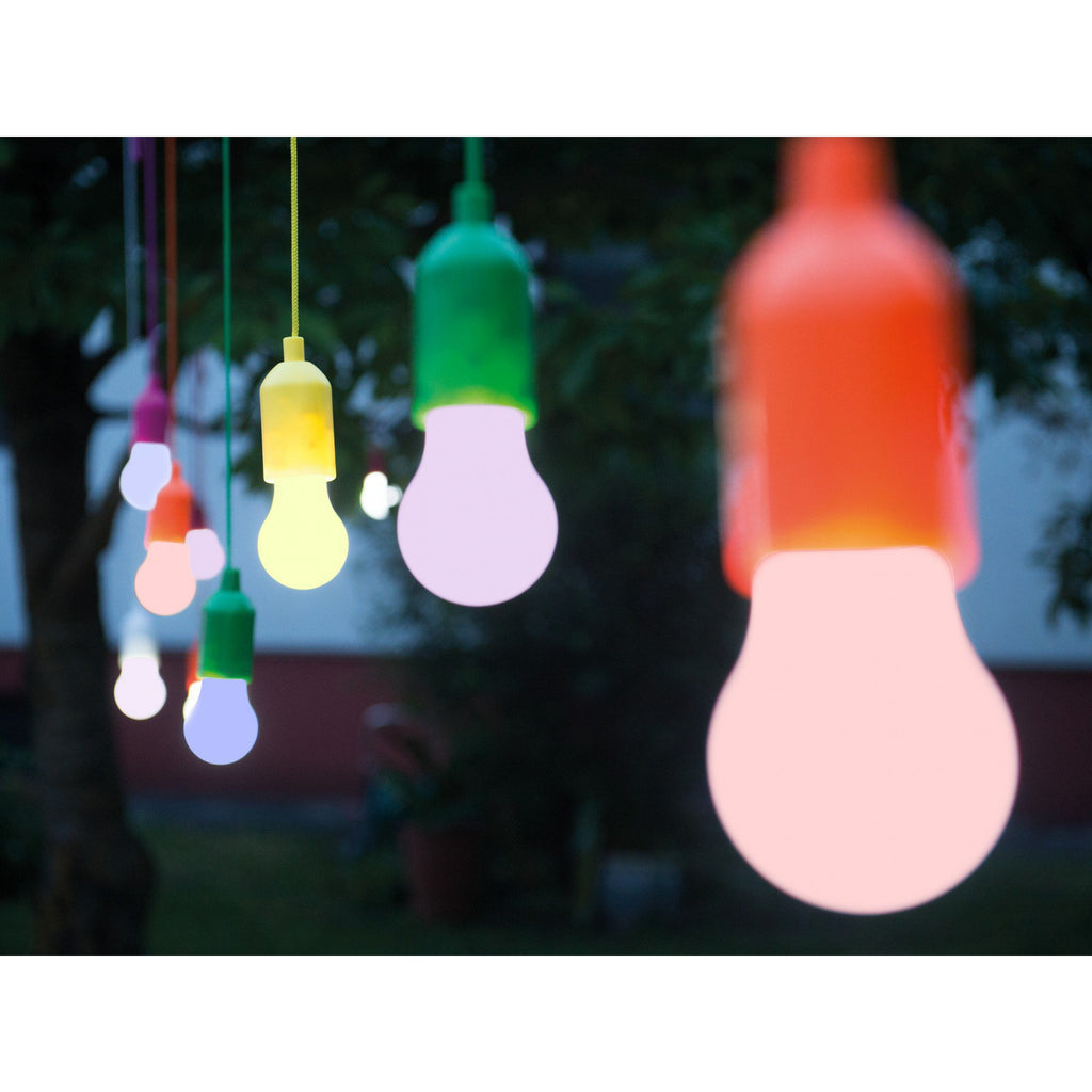 EcoBright Hanging Bulbs