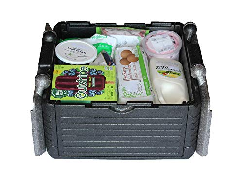 Homemax Collapsible Iceless Cooler Box