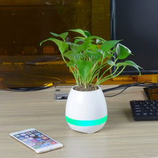 Flowerpot Induction Speaker