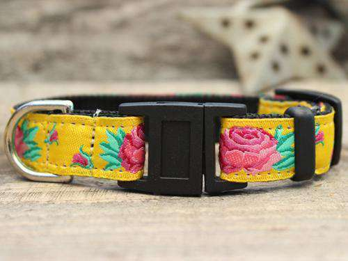 This is the Spanish Rose Design Breakaway Buckle Cat Collar by Surf Cat. It has a red rose set against the brilliant yellow of a Sevilla Sun. It has breakaway buckles that pop open under eight pounds of pressure. It is made of comfortable and lasting nylon overlaid with durable polyester ribbon. The quintuple stitching at specific stress points adds strength. he fabrics and stitching of the collar actively responds to your cat's actions helping the collar retain its pliable design.