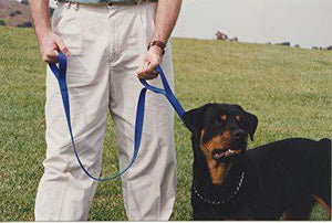 Grrrip™ - 2-in-1 Big Dog 6 ft Leash - Best dog product for training your dog