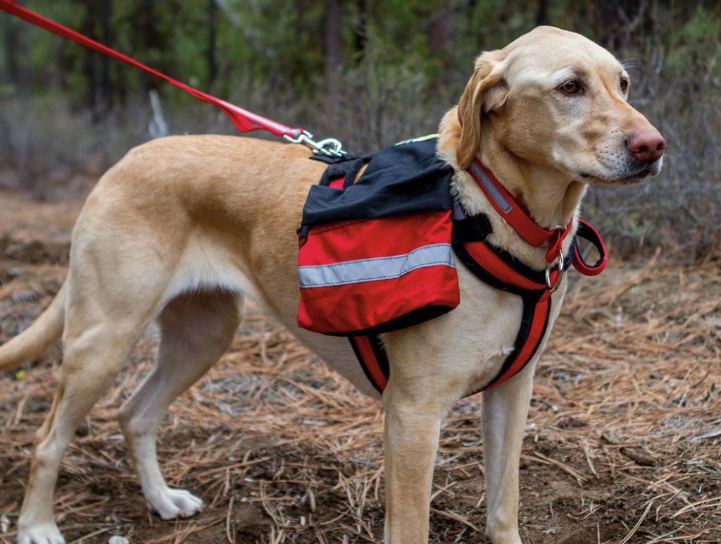 Urban Trail Dog Pack Attaches To Harness