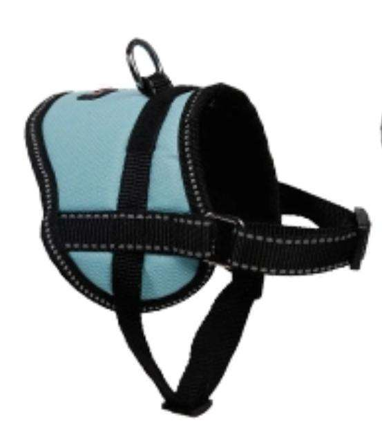 This is a photo of a Small Dog and Cat Oxford Training Harness by DogLemi. It's color is light blue. It's for training animals how to walk, not jump, and not pull. It's an excellent alternative to collars for pets with medical conditions such as collapsing trachea and more.