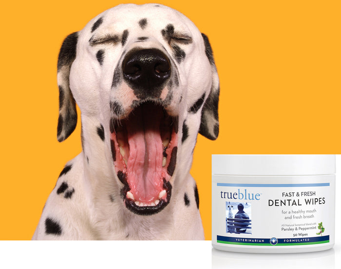 Dog Dental Wipes - 50 pads, Pet Products by TrueBlue