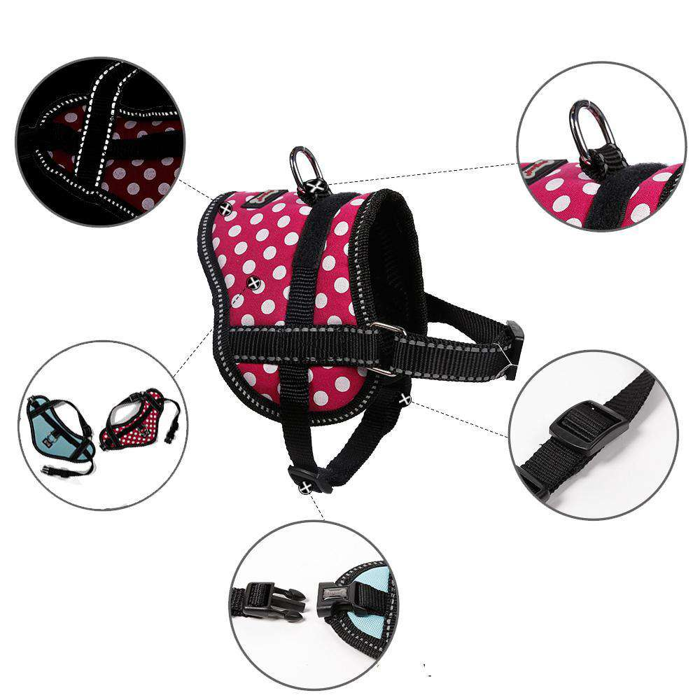 The photo is of a Small Dog & Cat Oxford Training Harness by DogLemi. In the photo, there are close up of the straps, chrome plated D ring, double stitching, and quick release buckle. It's for training animals how to walk, not jump, and not pull. It's an excellent alternative to collars for pets with medical conditions such as collapsing trachea and more.