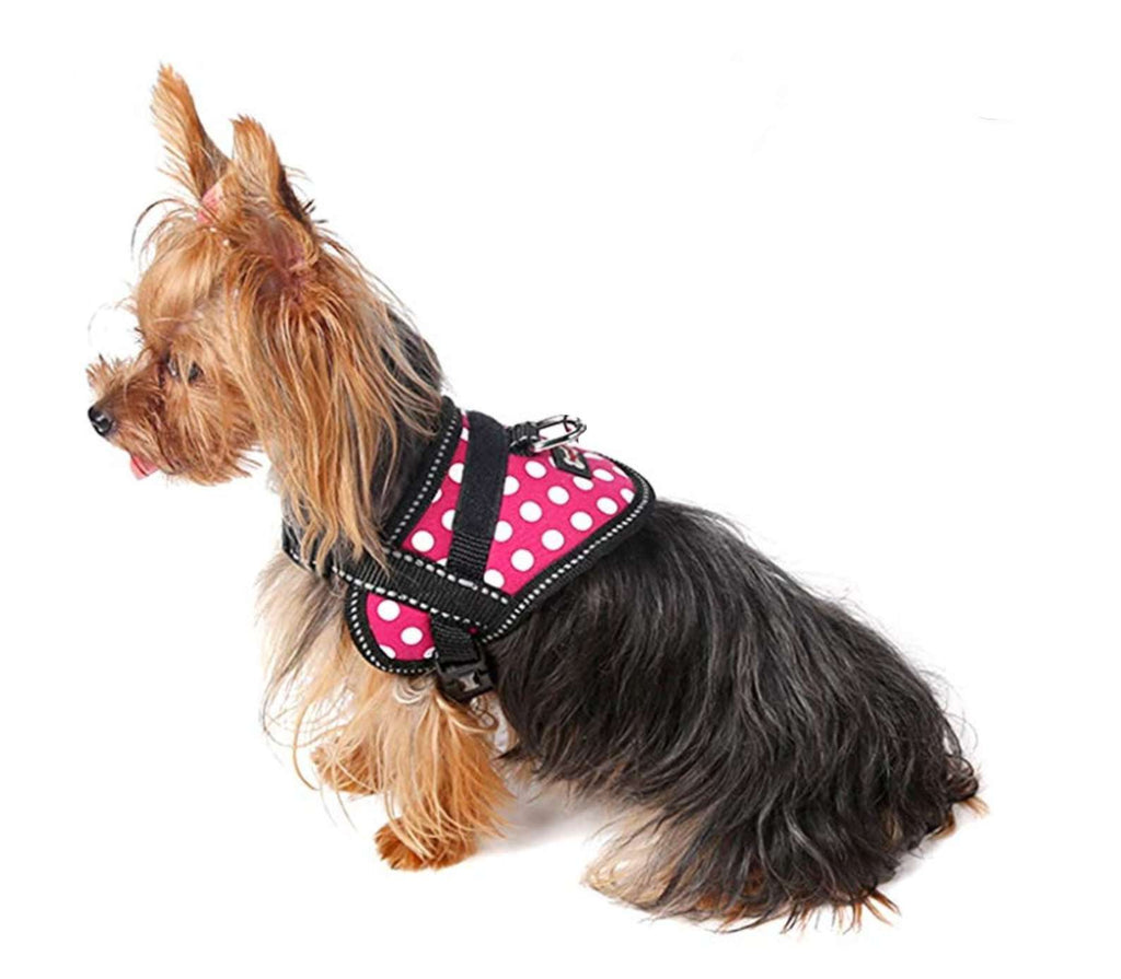 A small Yorkie is wearing an Oxford Training Harness by DogLemi. It's pink and has white polka dots. It's for training animals how to walk, not jump, and not pull. It's an excellent alternative to collars for pets with medical conditions such as collapsing trachea and more.