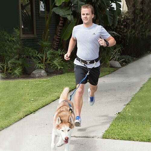 Urban Trail Jogger's Belt and Leash