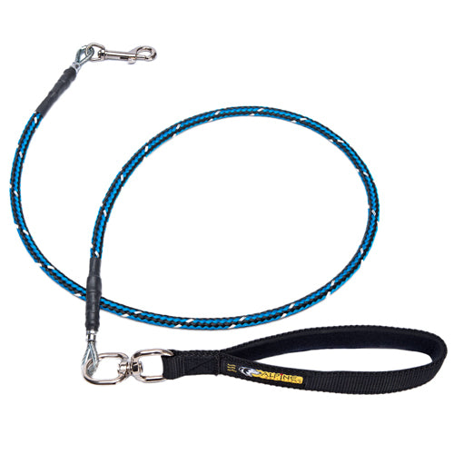Chew Proof Medium Duty Leash, Smaller Dogs