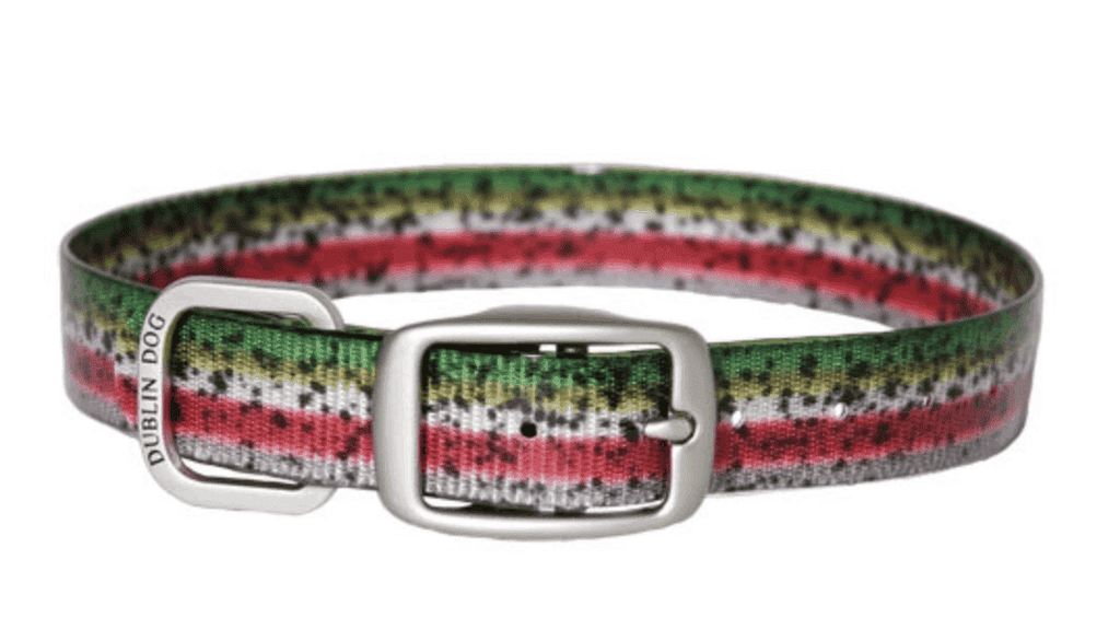 Rainbow Trout Series, Dublin Dog, KOA Collar - Stink Proof, Waterproof, Colorful