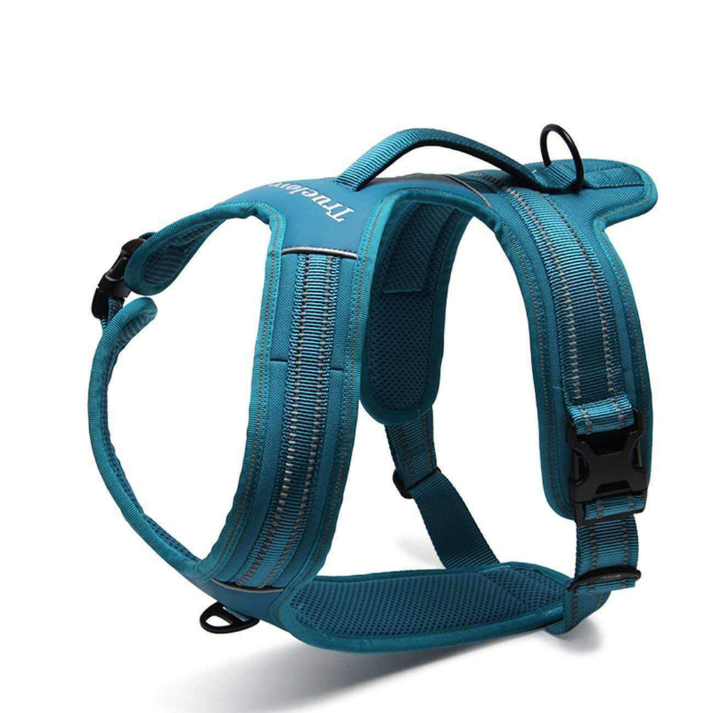 Truelove - Hybrid, No-Pull, Heavy Duty Dog Harness w/Shoulder Buckle - Black, Hot Pink, Teal