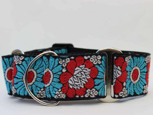 Hendrix Martingale Dog Collar by Diva Dog