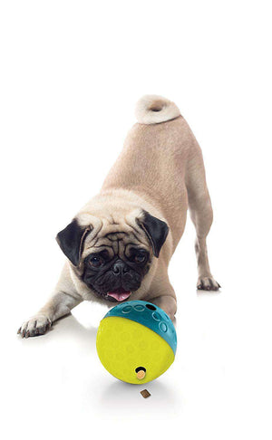 Nina Ottosson - Interactive Dog Treat Toy - Tumble Ball