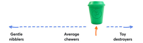 Chewer Scale