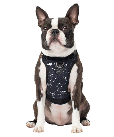 Canada Pooch The Everything Water Resistant Dog Harness Harness Canada Pooch