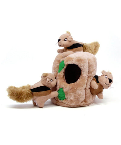 Outward Hound Hide-A-Squirrel® Puzzle Dog Toy Toys Rover