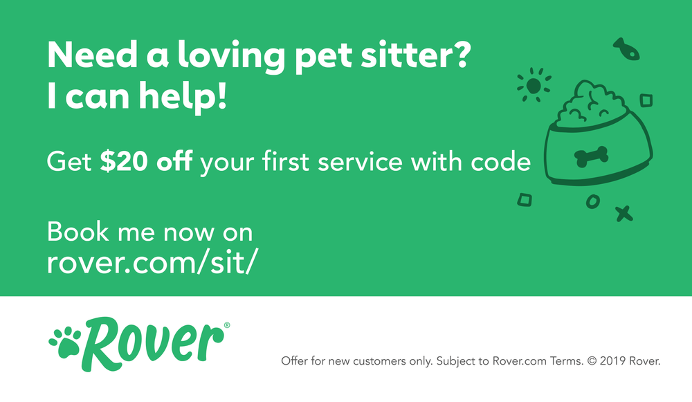 Pet Sitter Magnetic Promo Cards (100 cards)