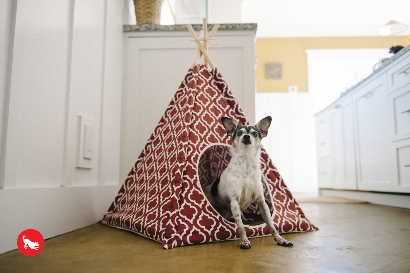 P.L.A.Y. Tent Pet Bed (3 Styles) Dog Bed PLAY