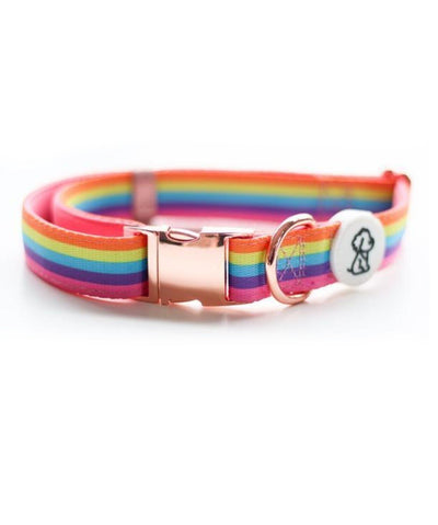 Ripley & Rue Rainbow Remix & Rose Gold Comfort Dog Collar Collar Ripley & Rue S
