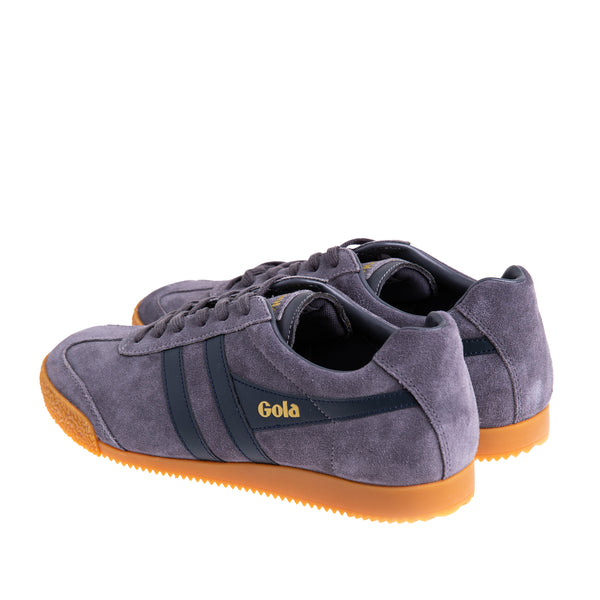 Men's Harrier Suede Sneaker - Grey/ Navy