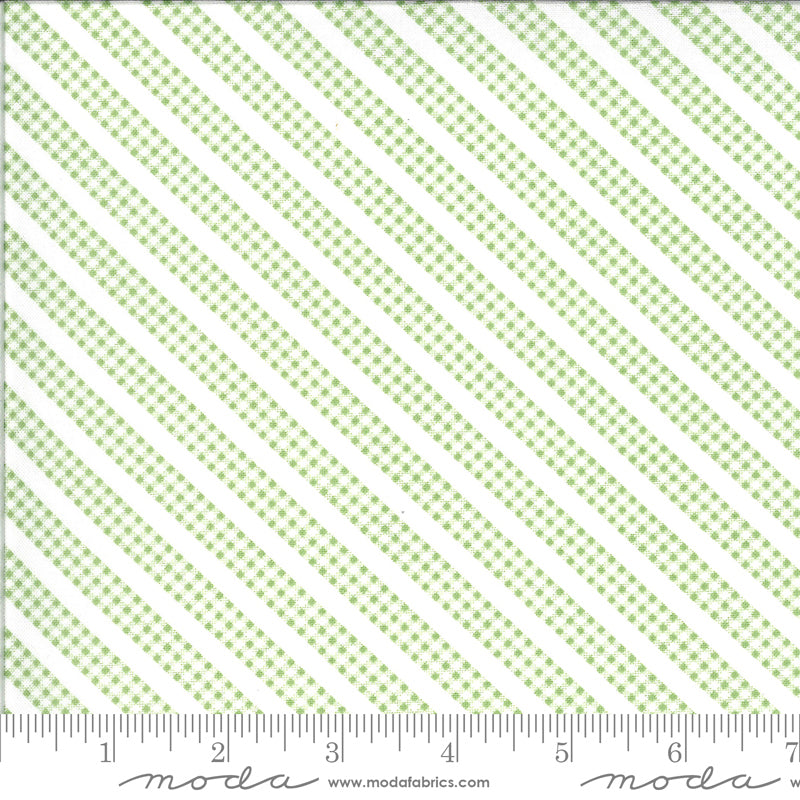 Spring Brook Gingham Stripe Sprout