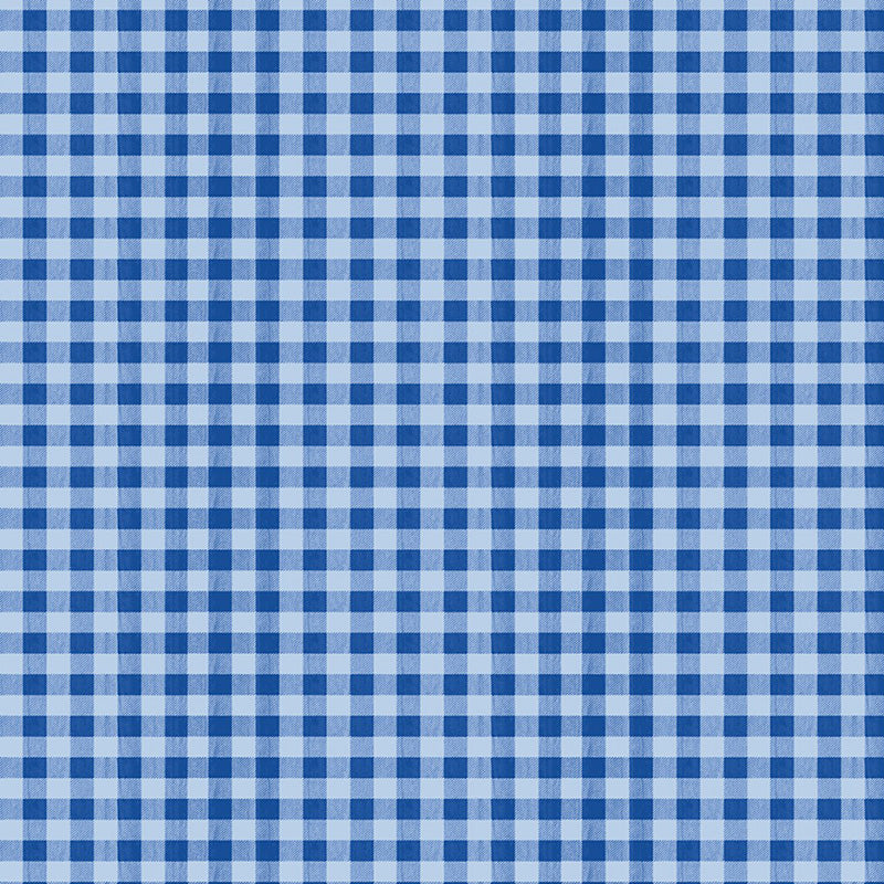 The Berry Best Gingham Blue