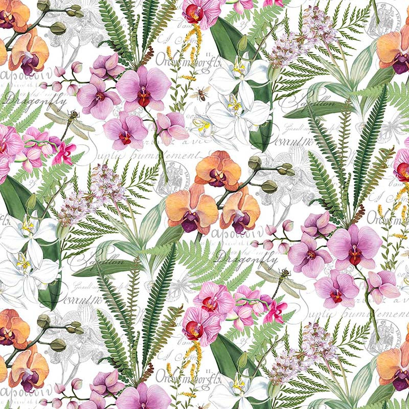 Orchids in Bloom Main Print White
