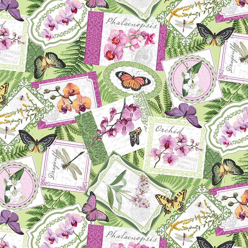 Orchids in Bloom Seed Packets Green