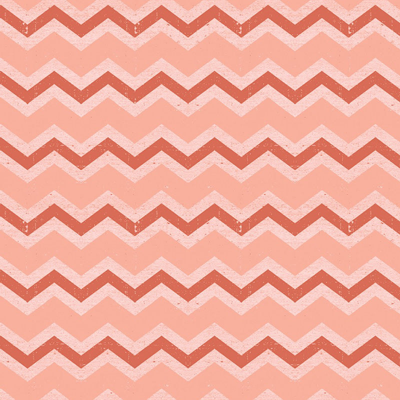 Snarky Cats Chevron Coral
