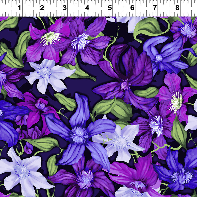 Trellis Packed Clematis Purple