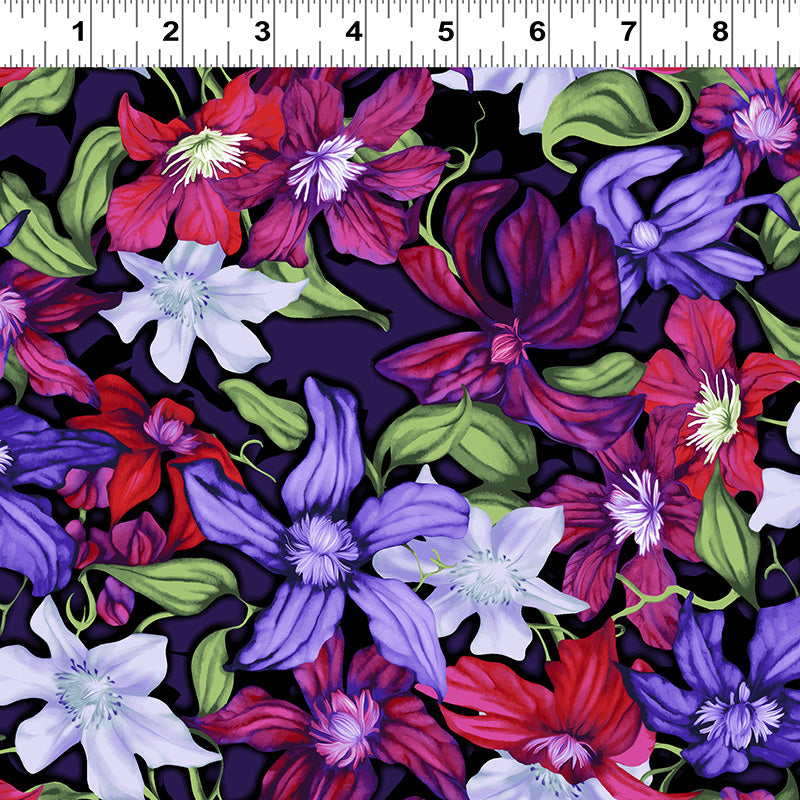 Trellis Packed Clematis Multi Color