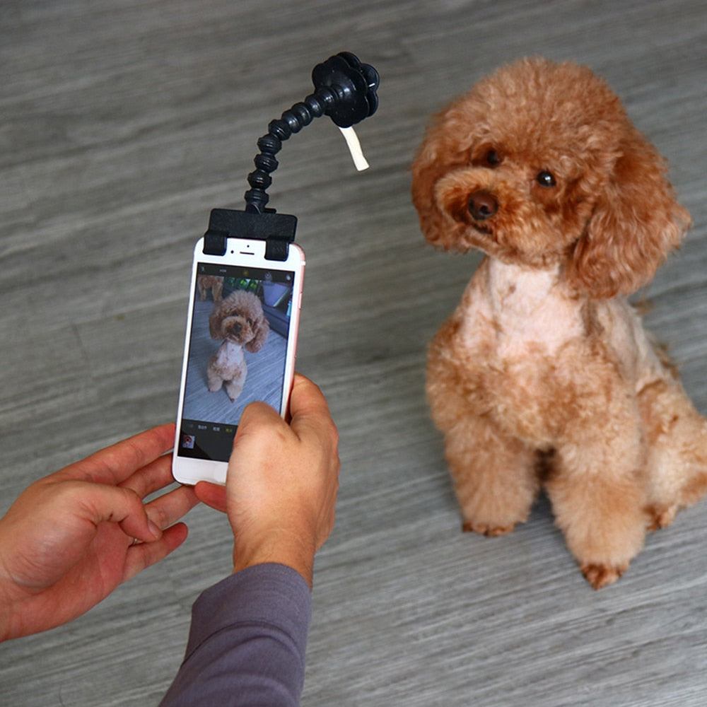 Pet Selfie Stick for Pets Dog Cat For iPhone Samsung Xiaomi Huawei and Most Smart phone Tablet Black/White Selfie Stick For Pets