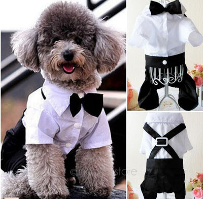 Pet Costumes Handsome Dog Rompers Clothing Formal Dog Jumpsuit with Bow Tie Groom Tuxedo
