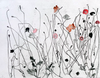 ELIZABETH BLACKADDER - Fire Coral