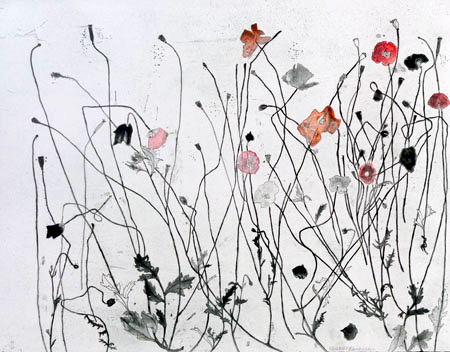 ELIZABETH BLACKADDER - Poppies