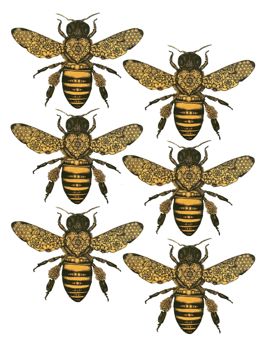 Black & Gold Honey Bees