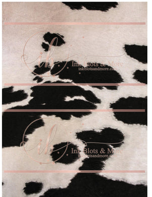 Black & White Cow Hide-C