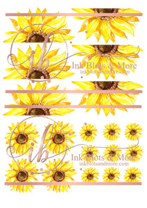 Various Sunflowers