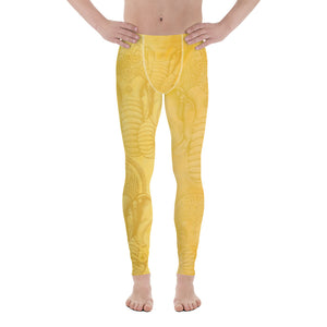 GANESH Men's Leggings - Two on 3rd