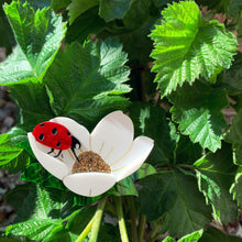 Load image into Gallery viewer, Ladybird Brooch