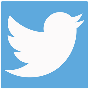 New Twitter Feed For Dropship Supplier News